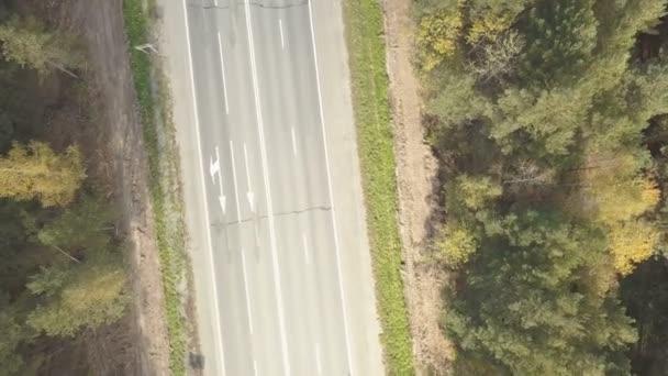 Letecké záběry venkovské silnici v podzimním lese