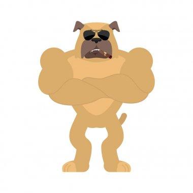Dog Strong Cool serious. Pet smoking cigar emoji. Bulldog strict