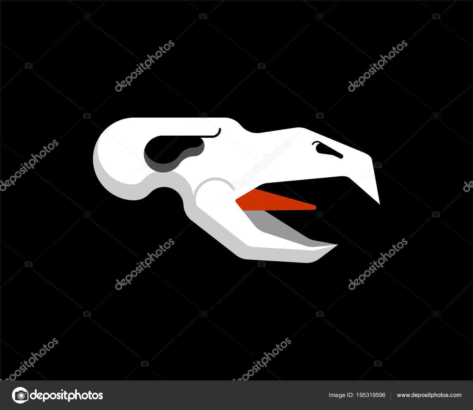 Cráneo de pájaro. cabeza del esqueleto de cuervo. Ilustración de ...
