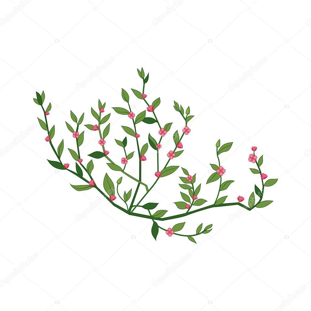 Petite Fleur Sauvage Rose Hand Drawn Illustration Detaillee Image