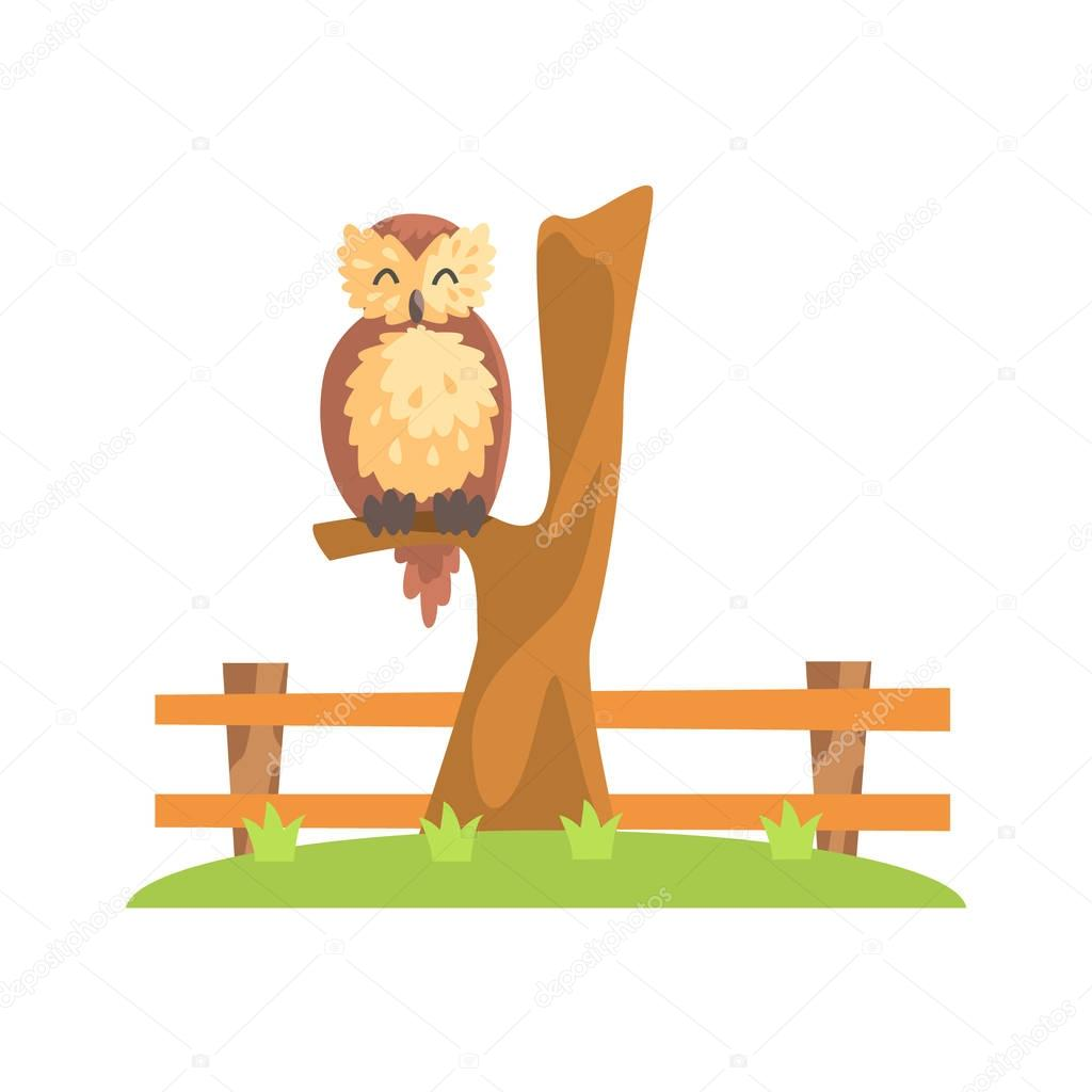 Brown Owl With Fluffy Feather Coat Sleeping On The Tree Branch In Zoo
