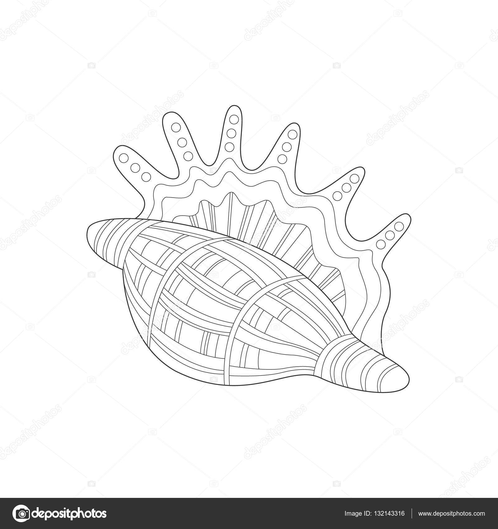 Lambis escargot coquille mer Nature sous marine adulte noir et blanc Zentangle Illustration du livre   colorier