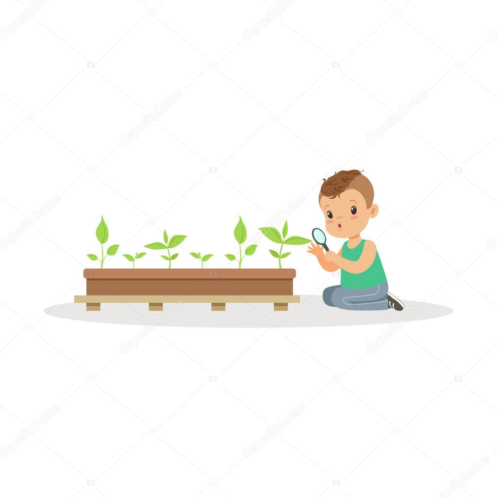 Cute little boy examining plants through a magnifying glass, lesson of botany in kindergarten cartoon vector Illustration