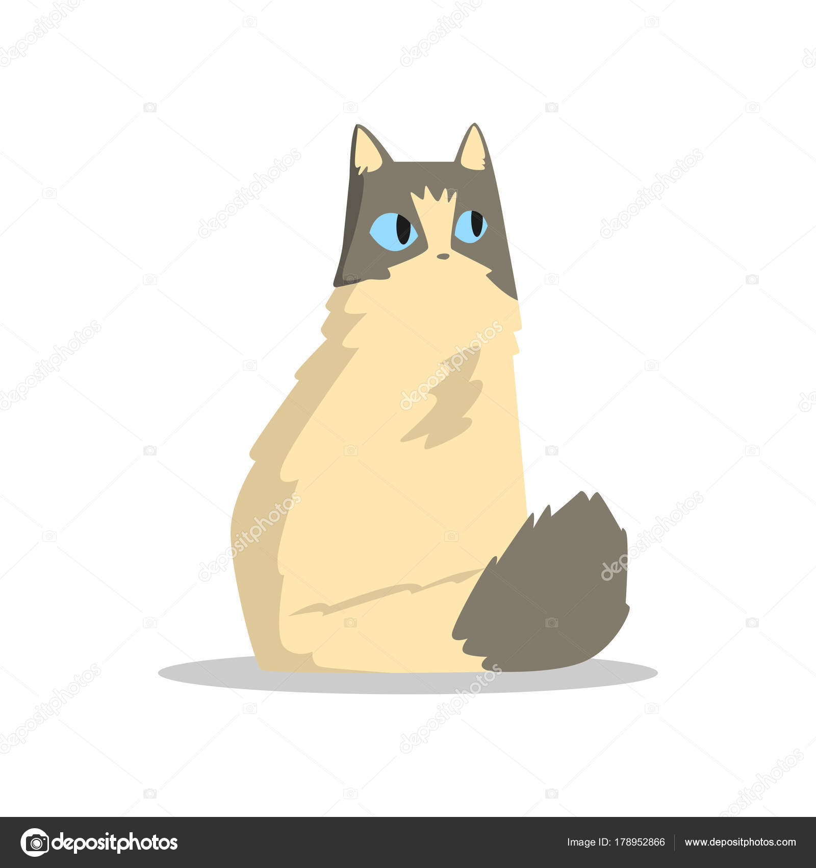Immagini: puffy cat cartoon. buffo gatto puffy beige con macchie