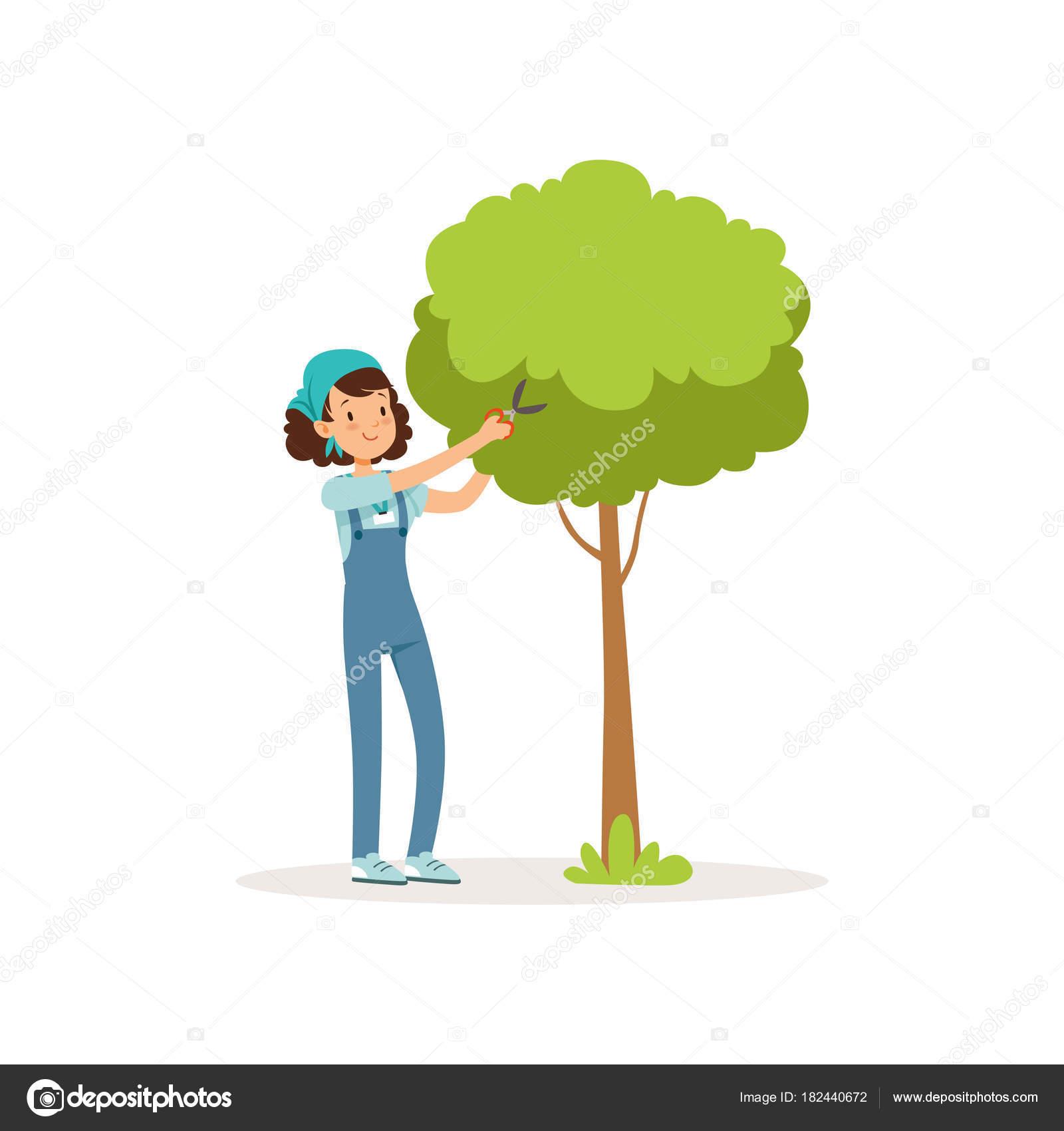 Fille De Couper L Arbre Vert L Aide De Ciseaux De Jardin