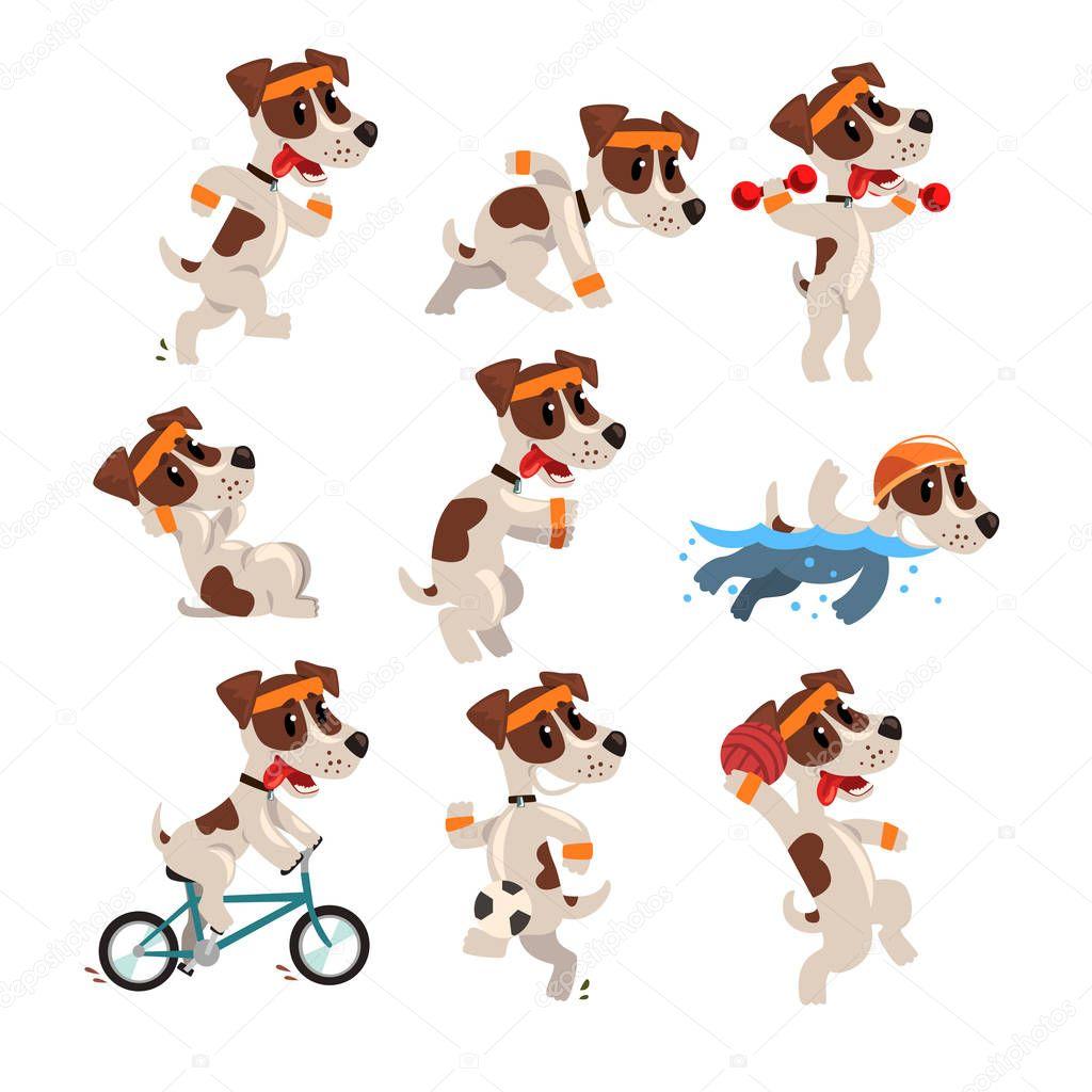 mignon jack sportive mis en terrier russell personnage dr le de chien fait divers genres de. Black Bedroom Furniture Sets. Home Design Ideas