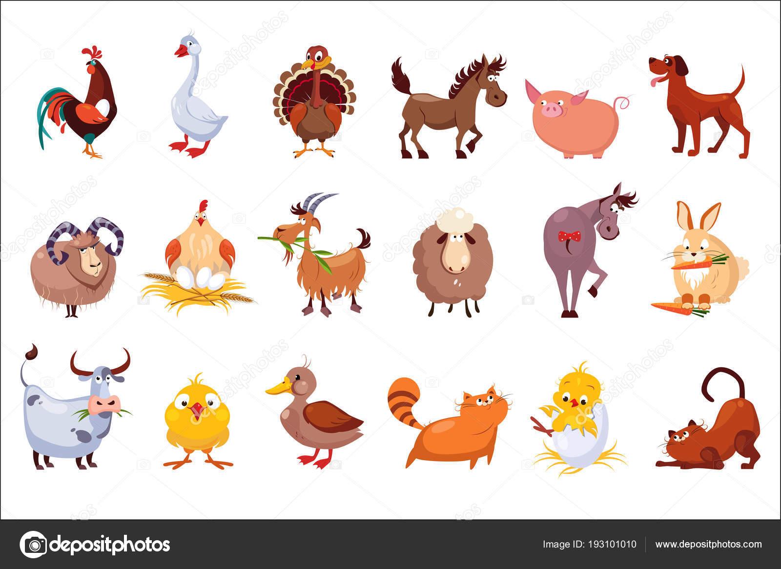 Imágenes: Animales De Corral Animados