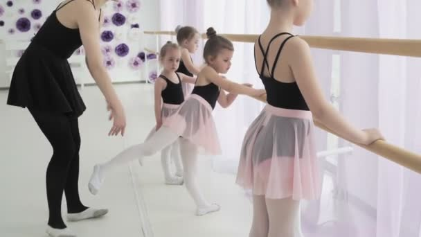 Young ballerinas in trendy ballet suits are practising foot movements and plie in light dancing hall with wooden ballet bar and large windows.