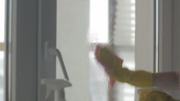 Housewife in yellow gloves wash windows with pink rag and detergent.