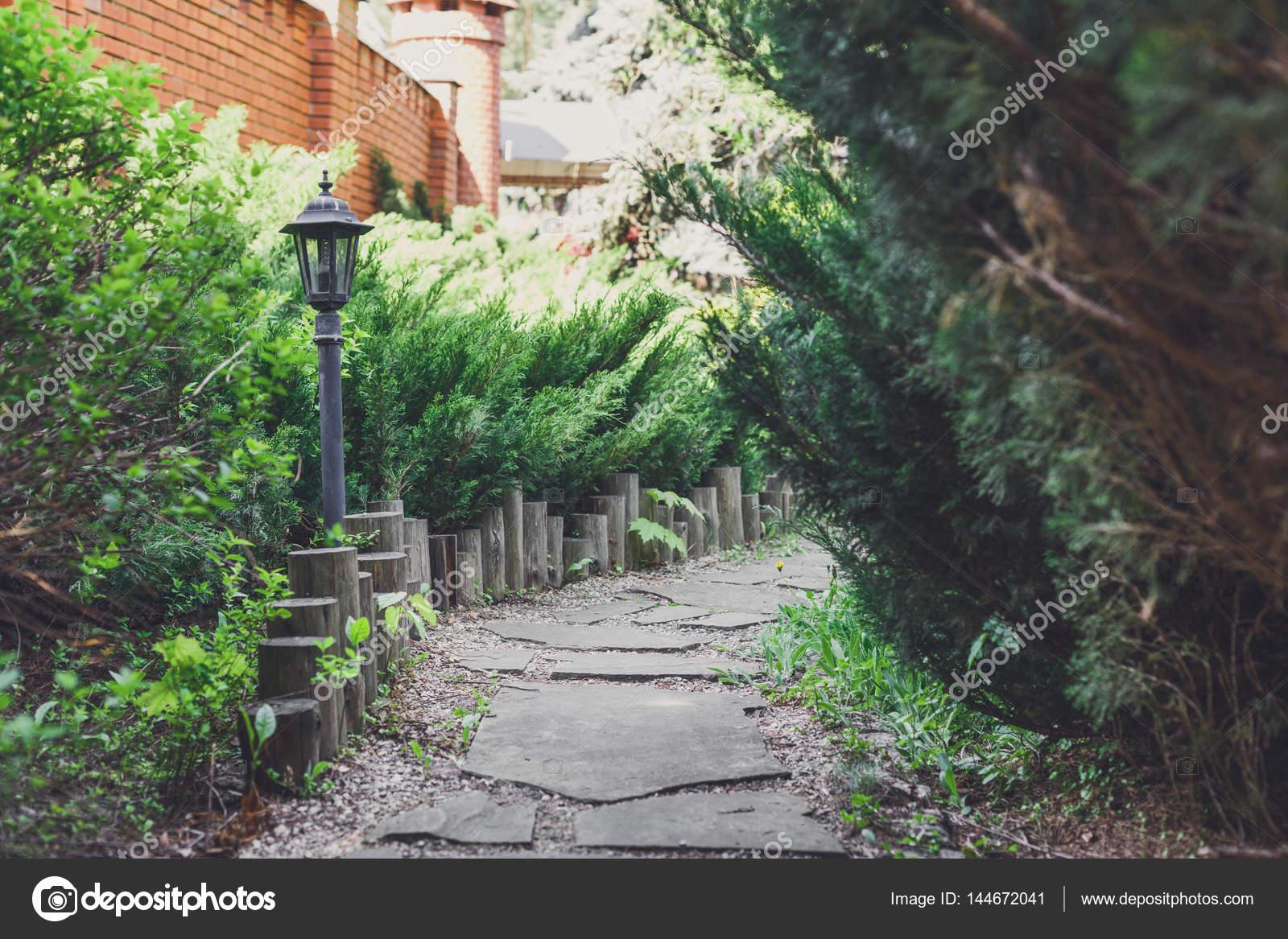 Aménagement paysager, des arbustes à feuilles persistantes et chemin ...