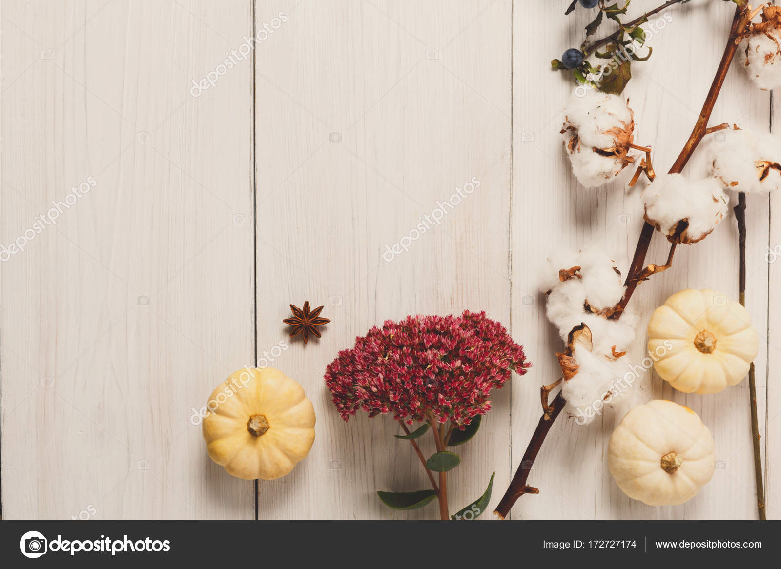 Frame made of dried fall flowers, pumpkins, branches and autumn leaves, also cotton, clove and sloe. Top view on white wood, flat lay, copy space — Photo by ...