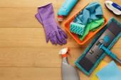 Reinigungsmittel und Produkte für das Aufräumen zu Hause