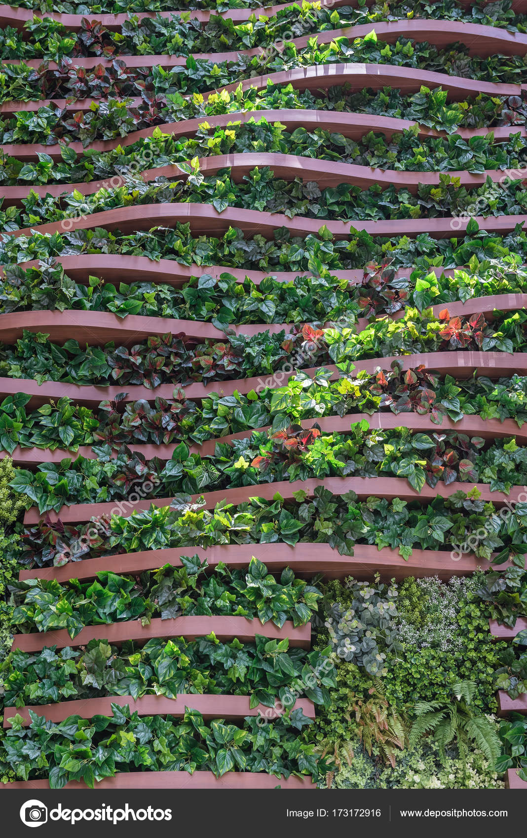Vertical Garden Wall Background Variety Of Plants Stock Photo
