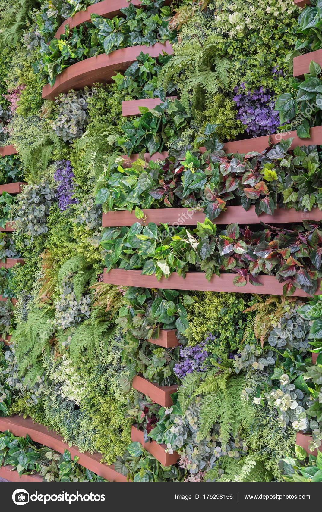 Vertical Garden Wall Background Stock Photo C Khongkitwiriyachan