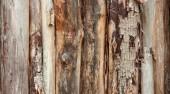 Struttura marrone della priorità bassa delle plance di legno verticale registra corteccia