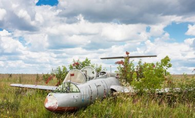 Old aircraft in elderberry bush, Aero L-29 Delfin (Maya) czechoslovakian military jet trainer on an abandoned airfield in Ukraine