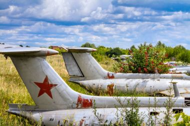 Old aircrafts in elderberry bush, Aero L-29 Delfin (Maya) czechoslovakian military jet trainer on an abandoned airfield in Ukraine