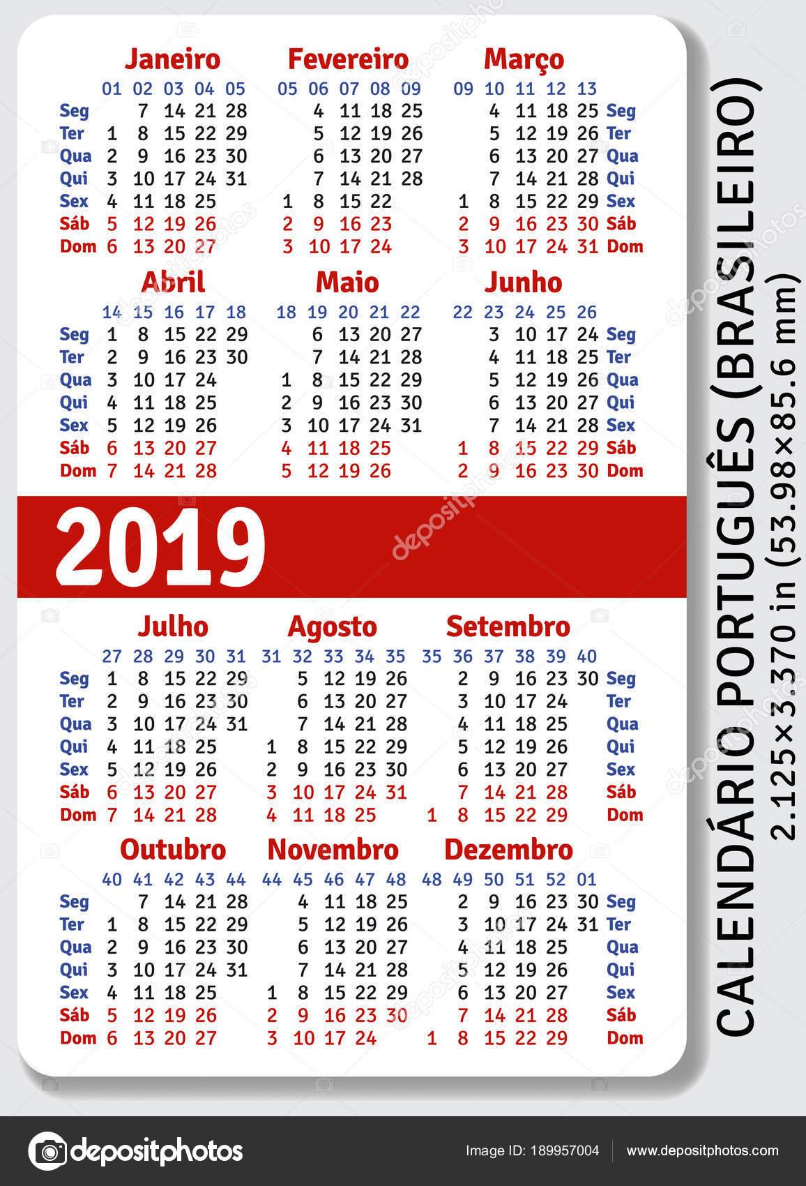 2019 évi naptár hetekkel Portugál (brazil) zseb naptár 2019 — Stock Vektor © rustamank  2019 évi naptár hetekkel