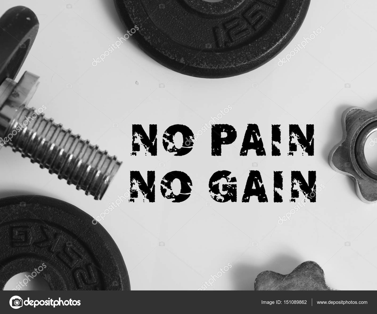 No Pain No Gain Fitness Sport Motivational Quote Flat Lay Bac