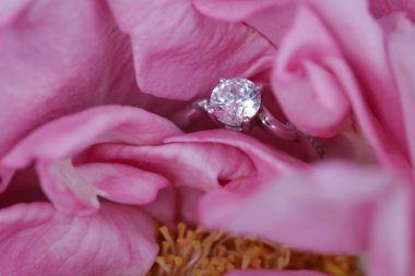 Diamond ring hidden in rose flower. Engagement, Wedding, Proposing, Marriage concept. Surprise St. Valentine day present