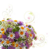 Photo Daisy and scabious flowers bouquet isolated.