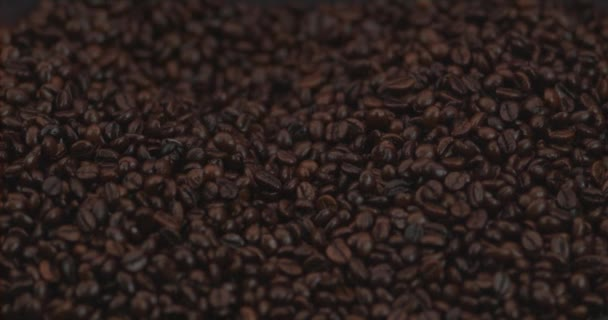slow motion footage of roasted coffee beans being tossed around