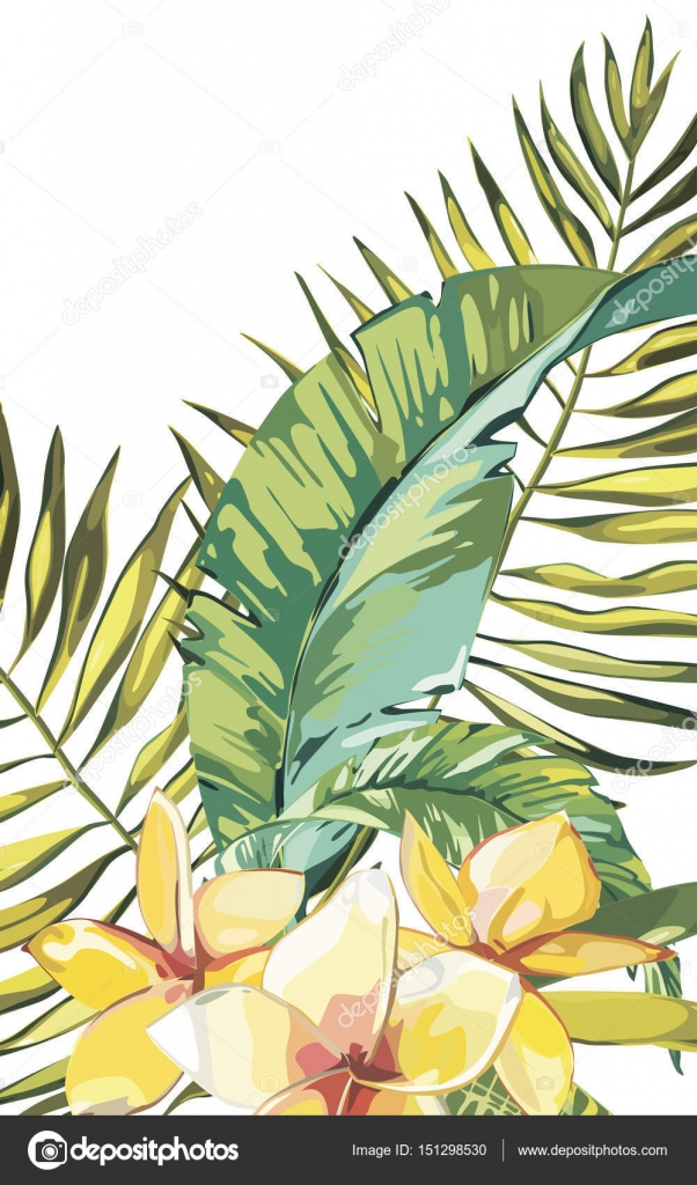 Banner, Poster mit Palme Blätter, Dschungel Blatt und Plumeria ...