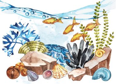 Marine Life Landscape - the ocean and the underwater world with different inhabitants. Aquarium concept for posters, T-shirts, labels, websites, postcards.