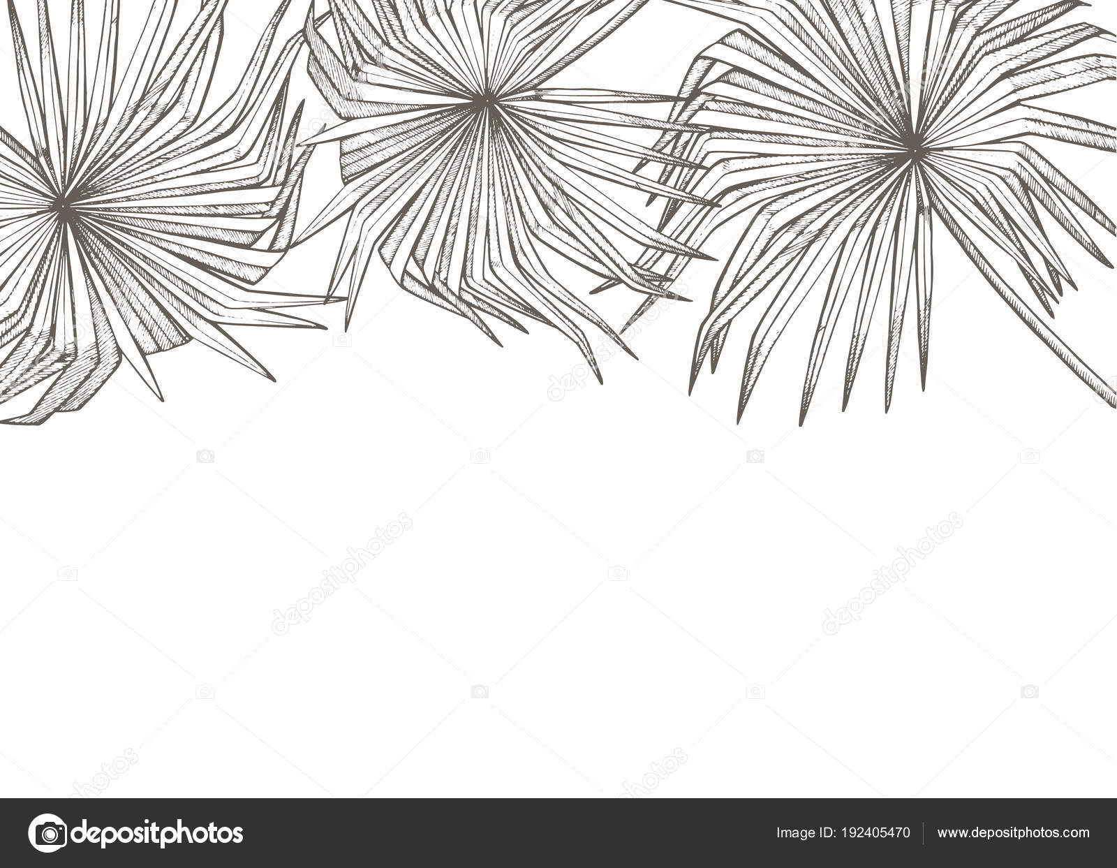 Summer tropical leaves vector design floral background illustration summer tropical leaves vector design floral background illustration invitation or card design with jungle stopboris Images