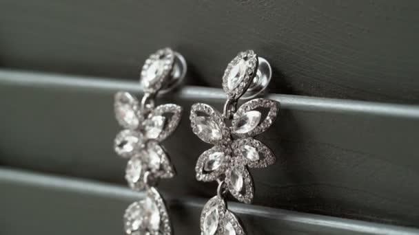 Beautiful jewelry earrings