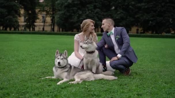Nevěsta a ženich s psy husky