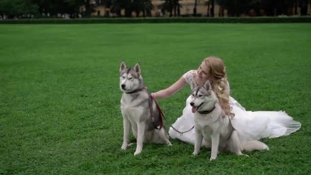 Braut mit Husky-Hunden