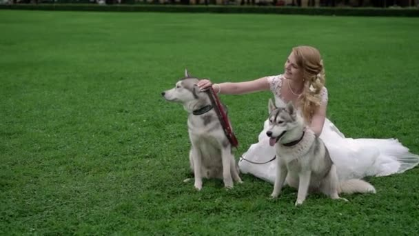 Bride with husky dogs