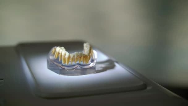 Jaw in dental clinic