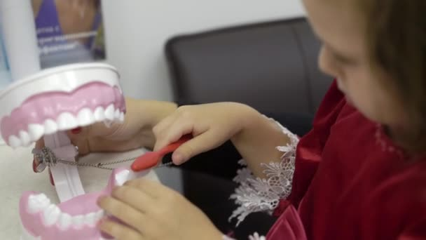 Child girl cleaning teeth jaw