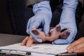 Fotografia polizia prende le impronte digitali di un criminale