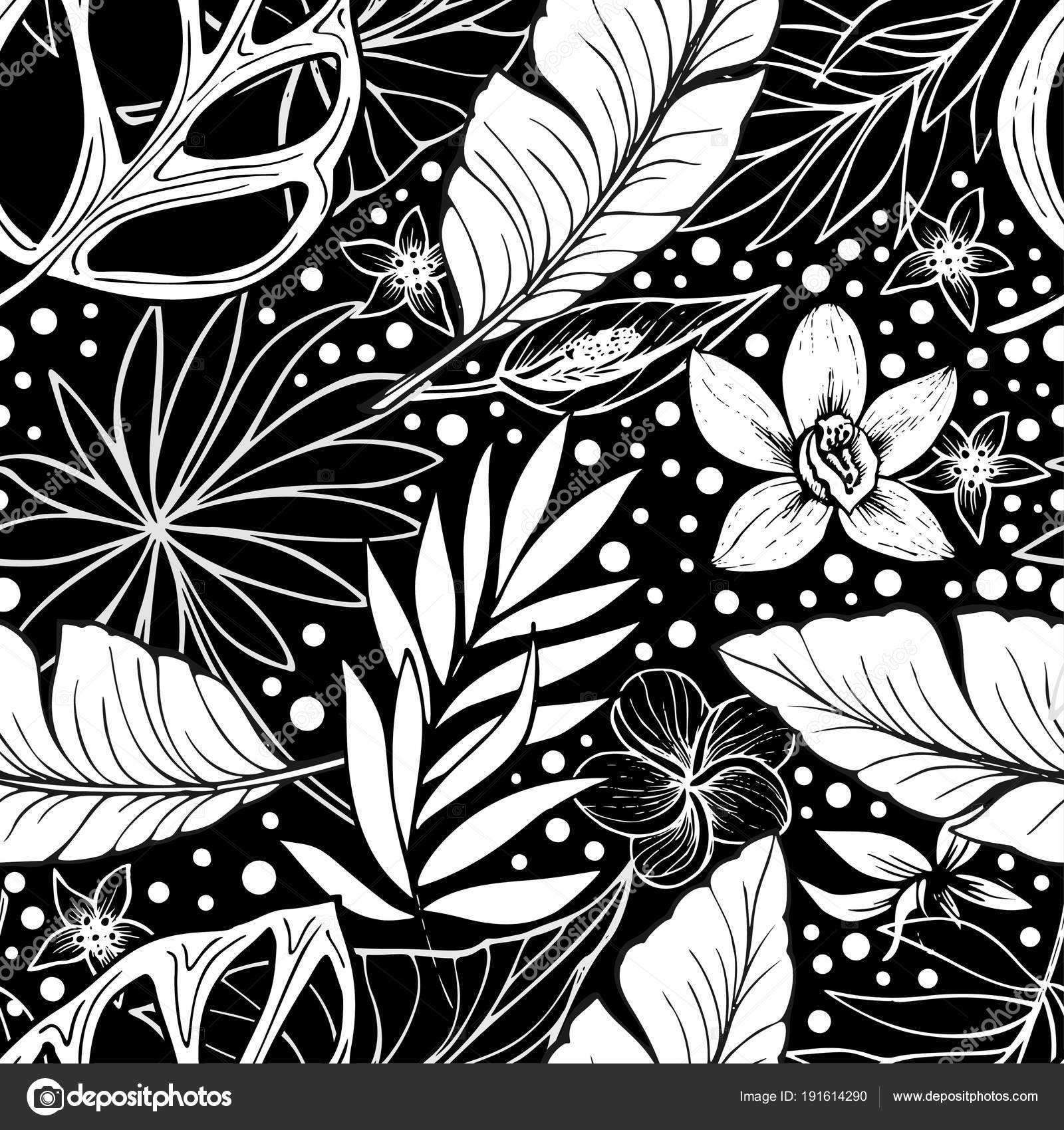 Black And White Vector Vector Seamless Beautiful Artistic Tropical