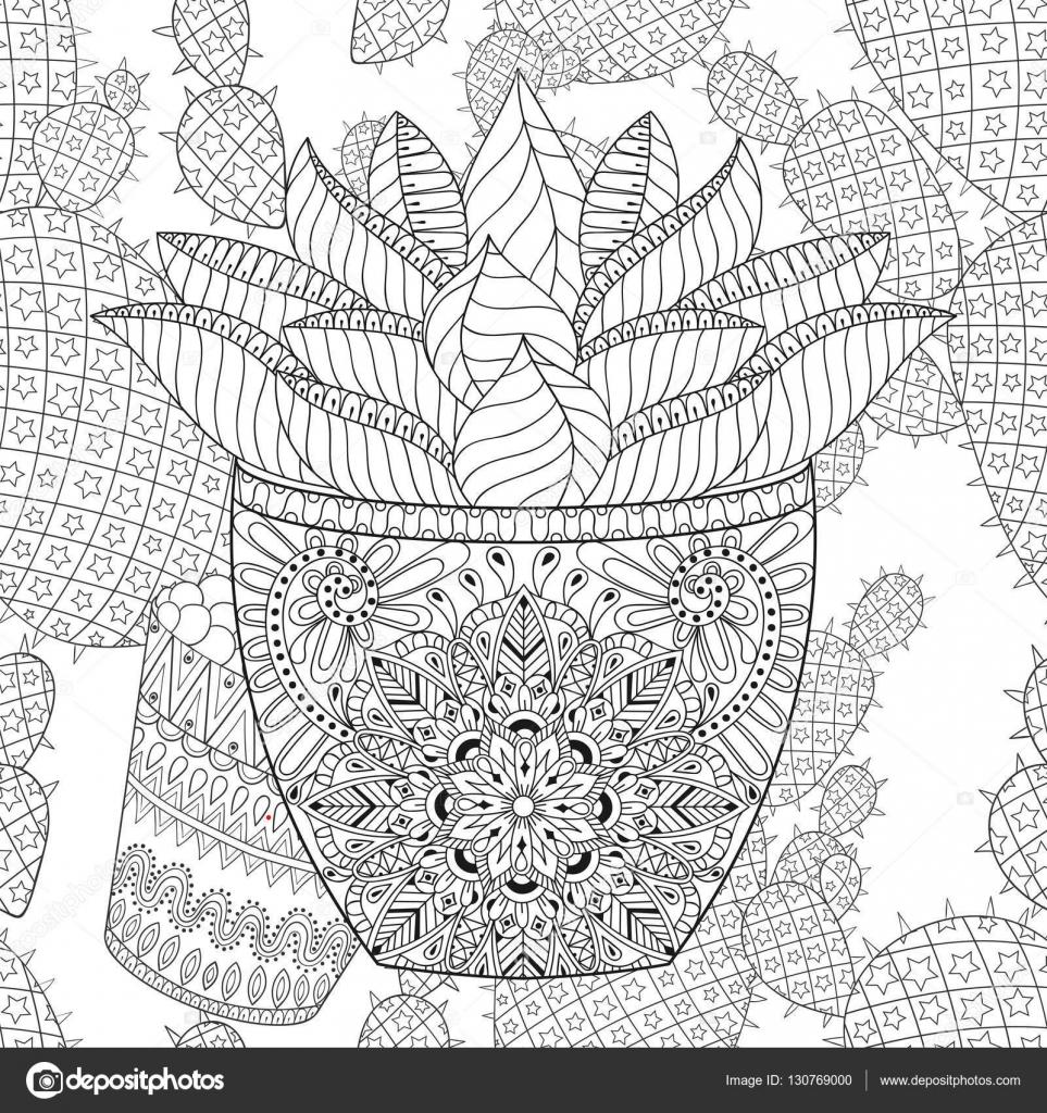 Zentangle suculentas en vector cactus de patrones sin fisuras ...