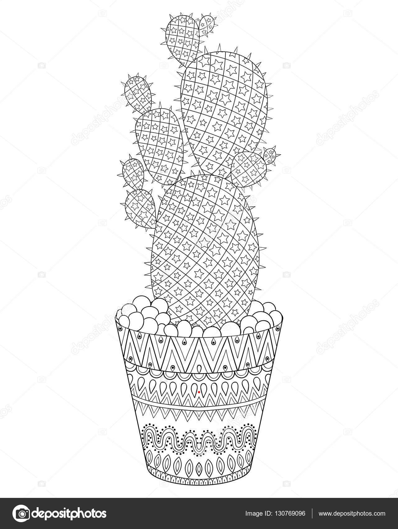 Zentangle Kaktüs Vektör çizim çizilmiş Anahat çöl Bitki Doku