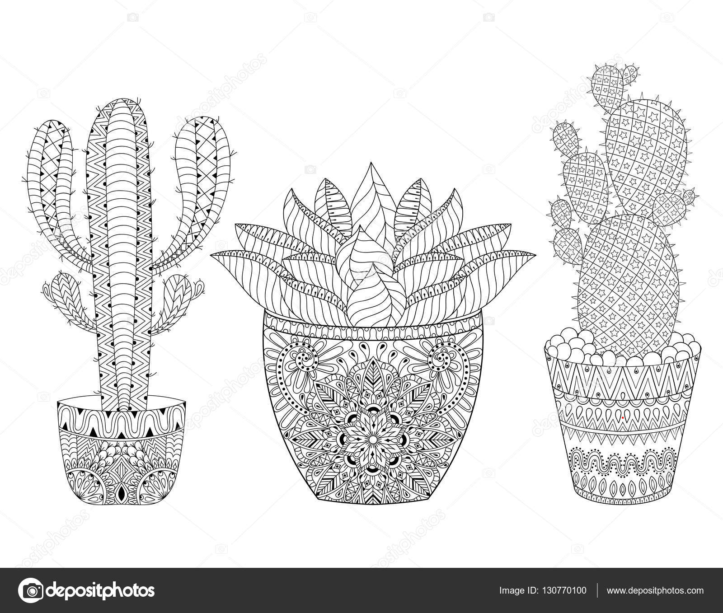 zentangle cacto conjunto ilustração vetorial pote de plantas do