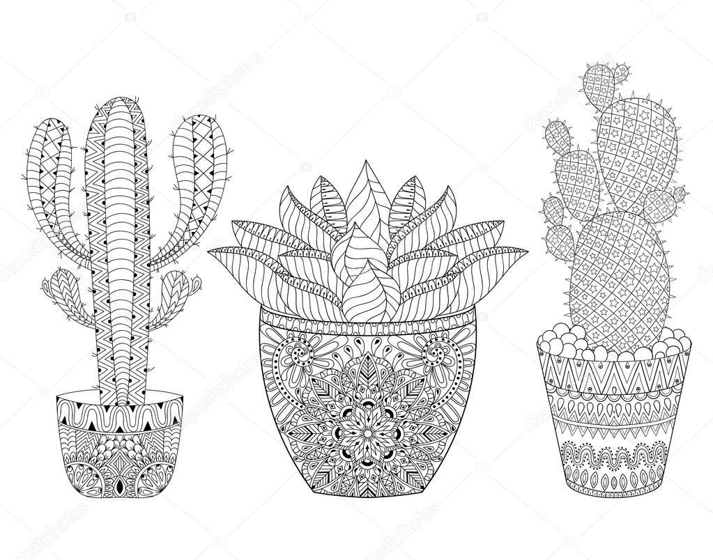 Zentangle Cactus set, vector illustration. Hand drawn outline desert plants pot, succulents in doodle style for adult antistress coloring pages, books, art therapy. Sketch for logo, tattoo, t-shirt print.