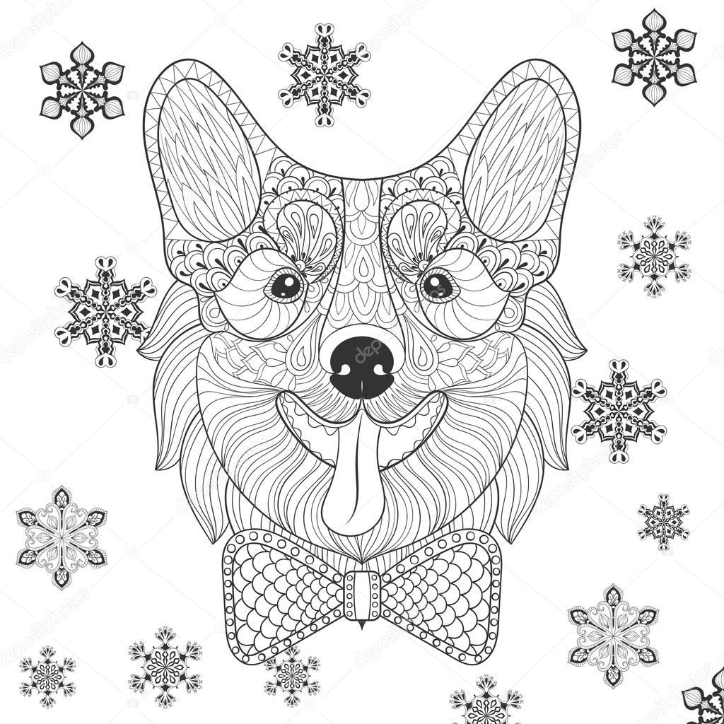 Vector Corgi with bow tie in zentangle, doodle style. Sketch for tattoo, postcards, adult anti stress coloring page.