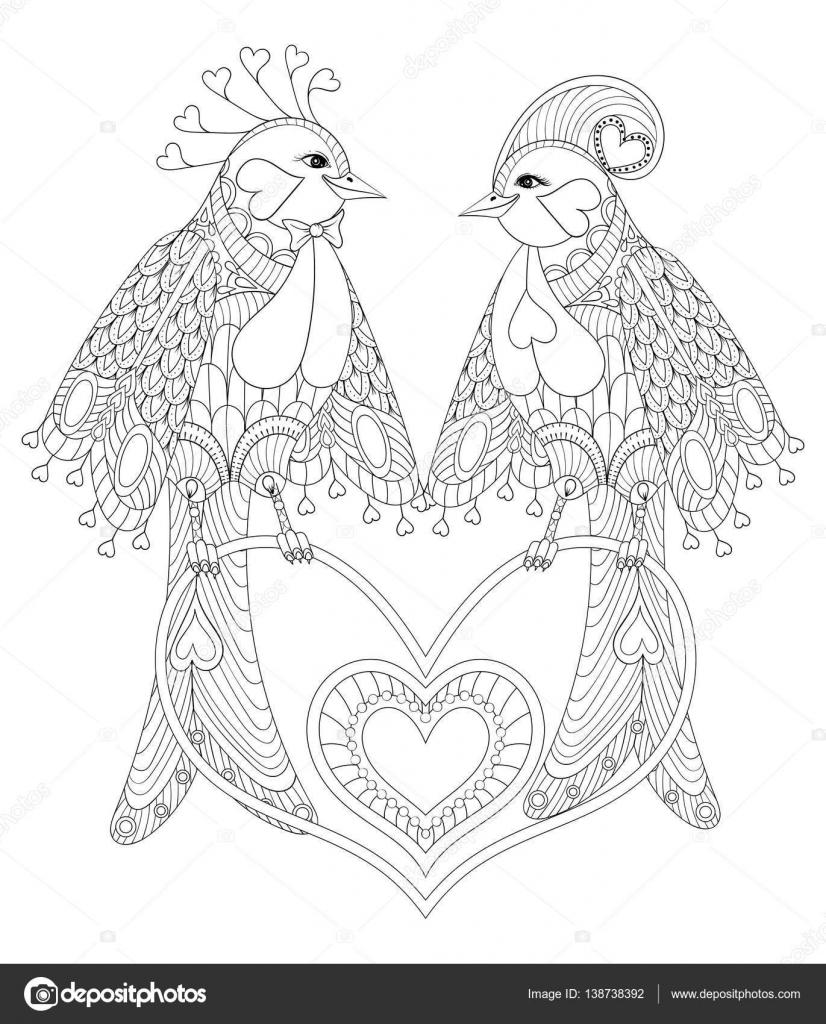 Schones Paar Von Exotischen Vogel Sitzt Auf Herz Fur Erwachsenen