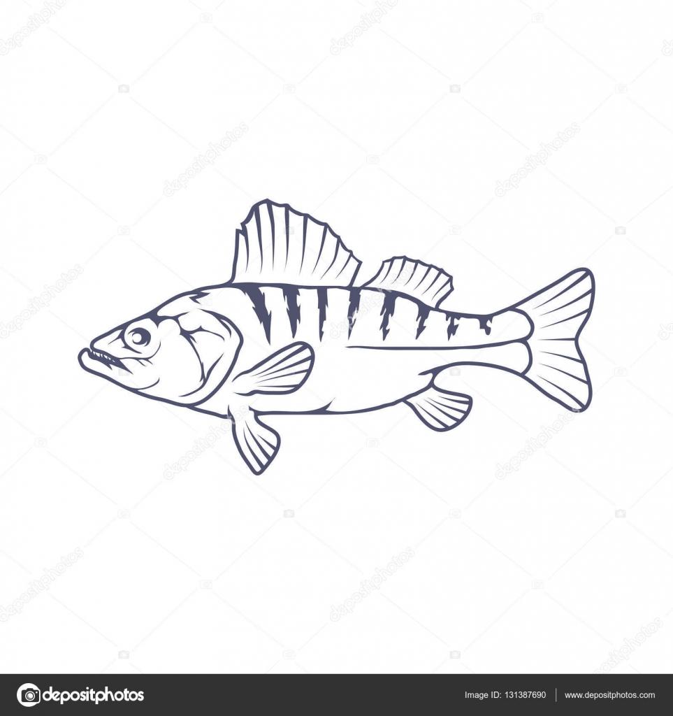 frischer Fisch-logo — Stockvektor © korniakovstock@gmail.com #131387690