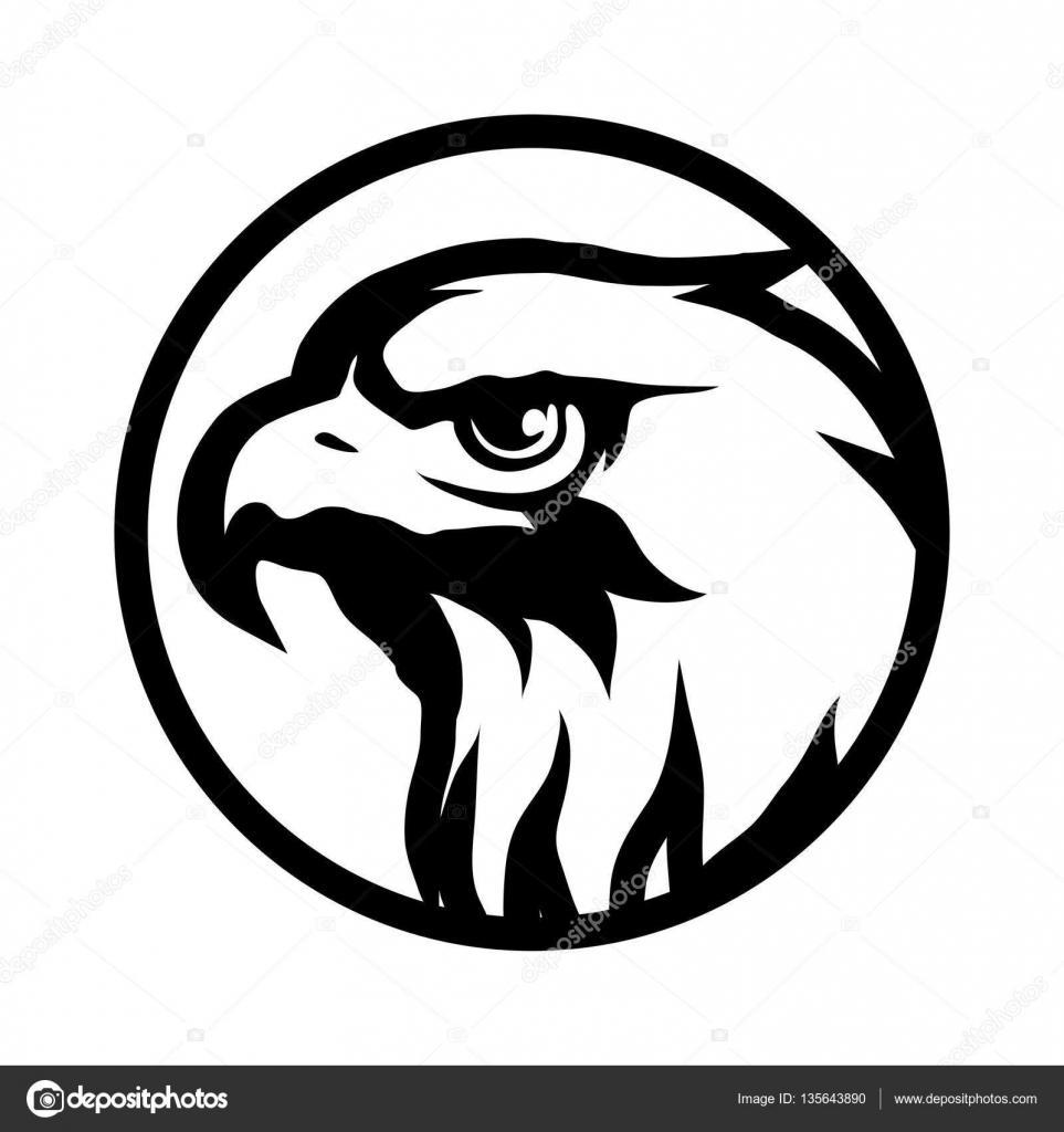 Hawk Stock Vectors Royalty Free Hawk Illustrations Depositphotos
