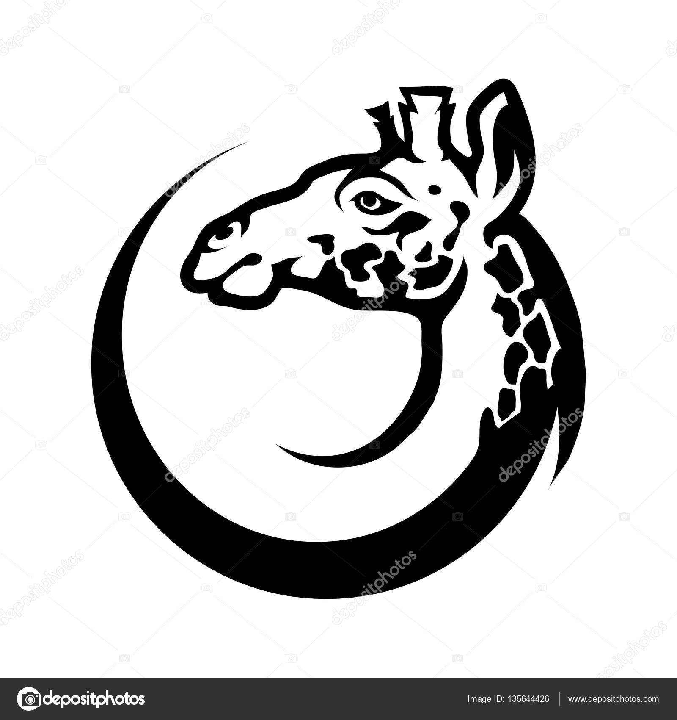 Zürafa Kafa Daire Stok Vektör Korniakovstock At Gmailcom 135644426