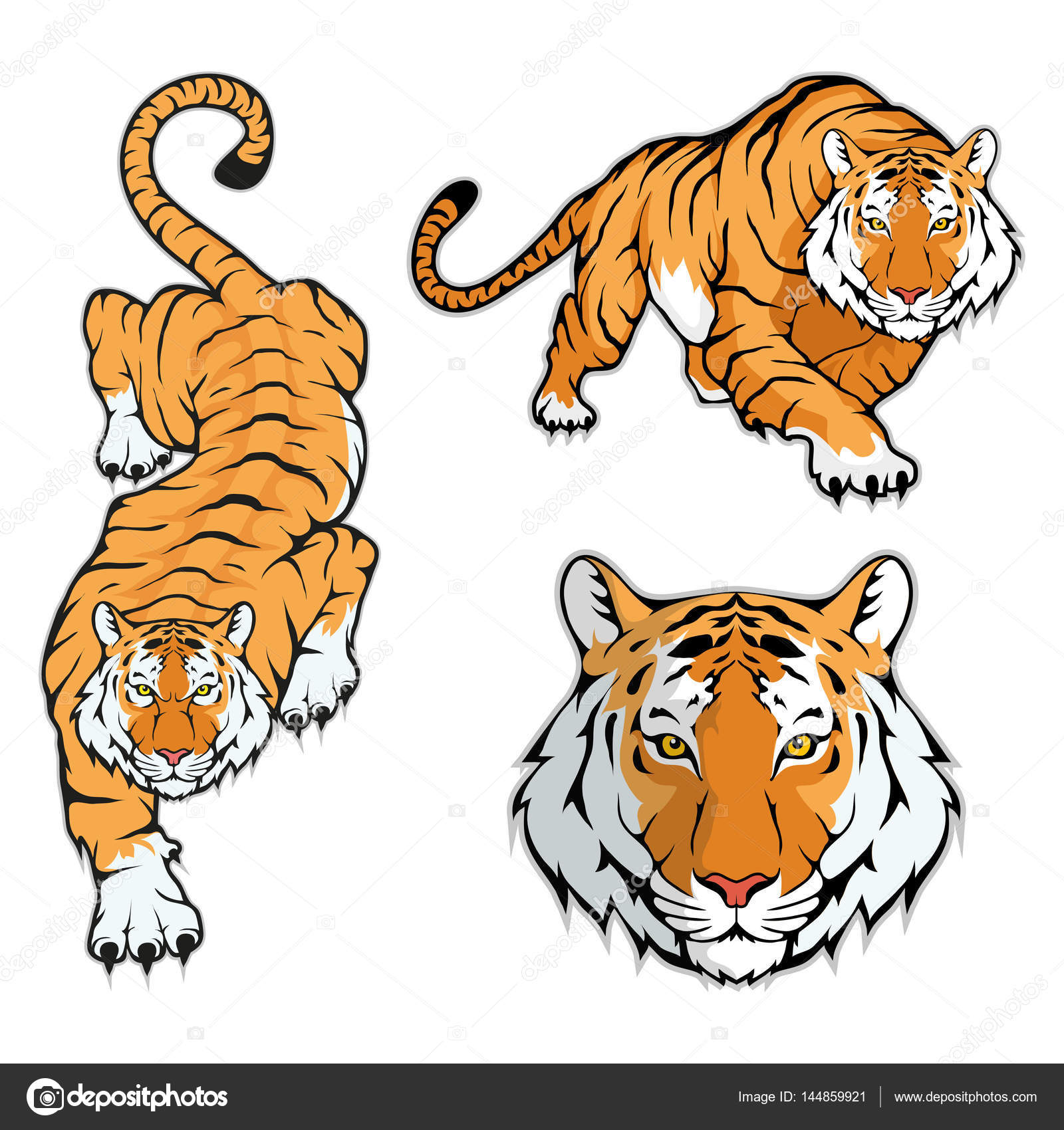 Images: printable tiger | Tiger logo template — Stock Vector