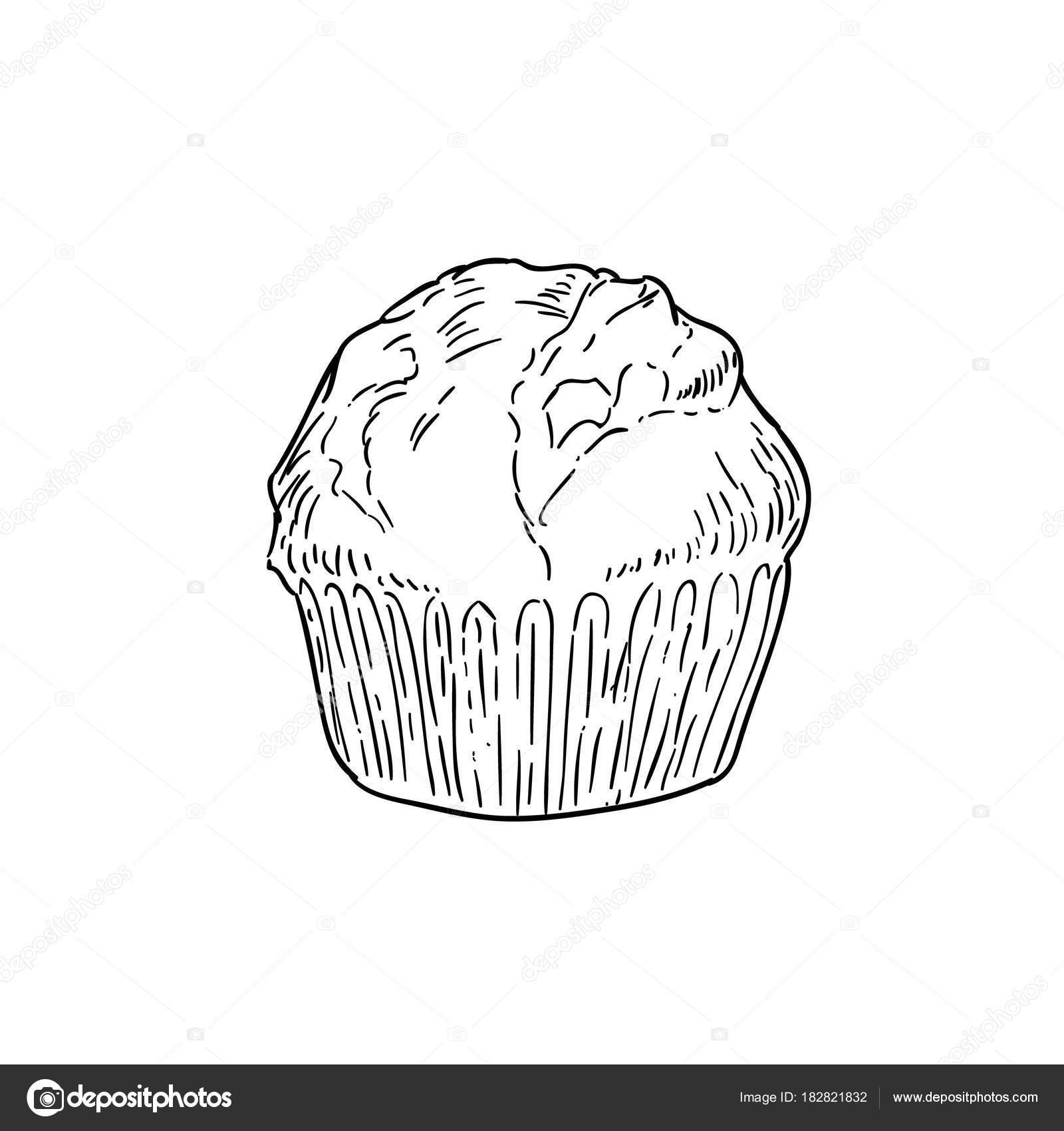 Cupcake En Noir Et Blanc Dessin Doodle De Dessin Animé