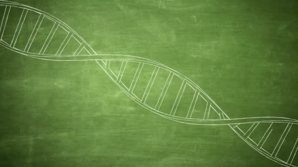 Hand drawn DNA strand rotating on the green chalkboard. Seamless loop animation. 4K, Ultra HD resolution. More color options available in my portfolio.