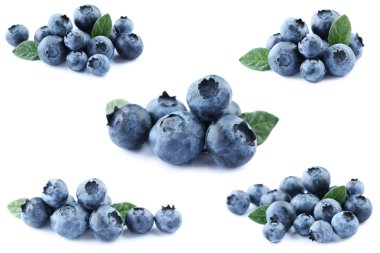 Collage of blueberries isolated